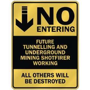 NO ENTERING FUTURE TUNNELLING AND UNDERGROUND MINING