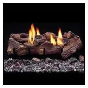 Monessen DST 30 See Thru Vent Free Propane Gas Logs