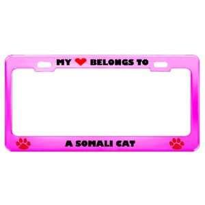 A Somali Cat Pet Pink Metal License Plate Frame Tag Holder