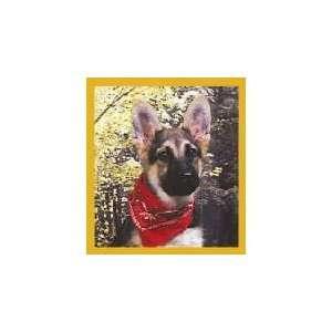 New Magnetic Bookmark German Shepherd Pup W/Bandana High
