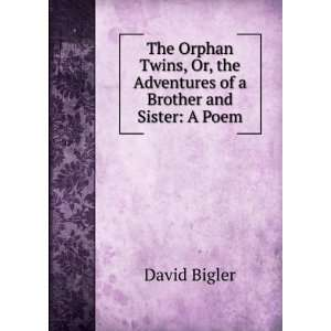, the Adventures of a Brother and Sister: A Poem: David Bigler: Books