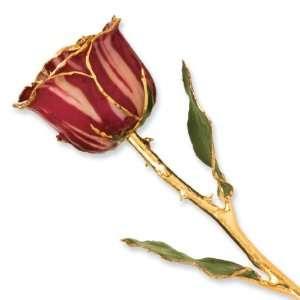Dipped 24k Gold Trim Abracadabra Rose In Gold Gift Box