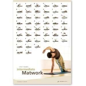 com Stott Pilates Intermediate Matwork Wall Chart Sports & Outdoors