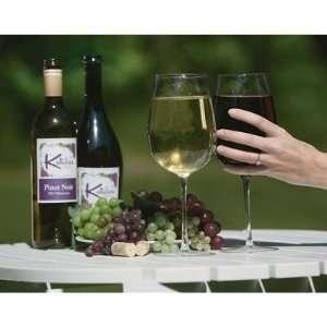 Extra large Jumbo Giant Wine Glass 2pk   Holds a Full