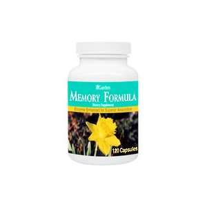 Memory Formula 120 ct 120 Count: Health & Personal Care