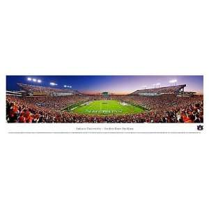 Auburn Tigers Jordan Hare Stadium Unframed Panoramic Picture