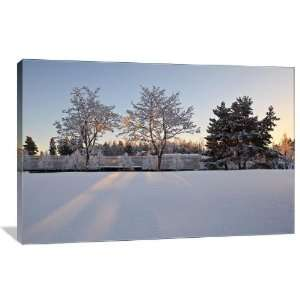 Winter Sunset on Snow Covered Trees   Gallery Wrapped Canvas   Museum
