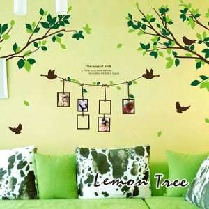Decal Sticker   Green Tree Branches with Love Birds & Photo Frames