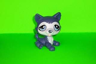 Littlest Pet Shop LPS Figure #1217 Purple Sitting Husky Dog Puppy