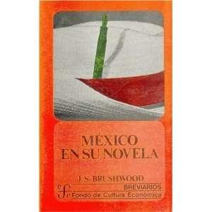 Mexico en su novela: una nacion en busca de su identidad (Breviarios