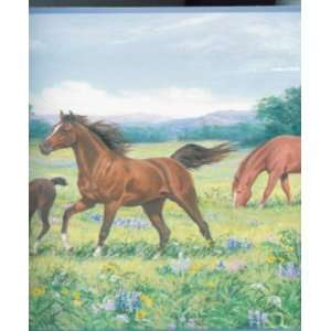 Horse in Field wallpaper Border SINGLE rolls Home