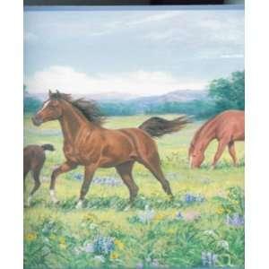 Horse in Field wallpaper Border SINGLE rolls