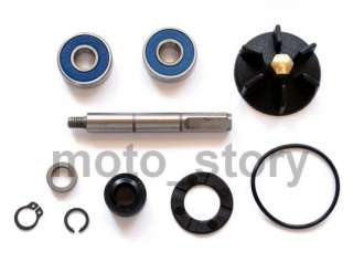 WATER PUMP REPAIR KIT GILERA RUNNER SP RACE DD 50 50cc