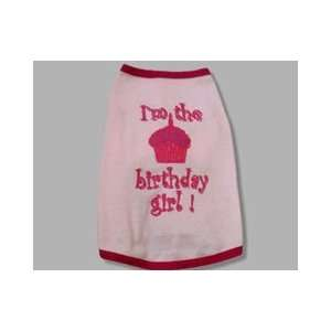 Adorable Pink Slip On Birthday Girl Dog Tee Shirt (Medium):