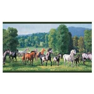 allen + roth Jewel Tone Wild Horses Wallpaper Border LW1340265