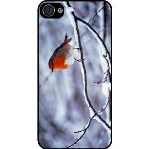 Robin Redbreast on Twig Rubber Black iphone Case (with bumper) Cover