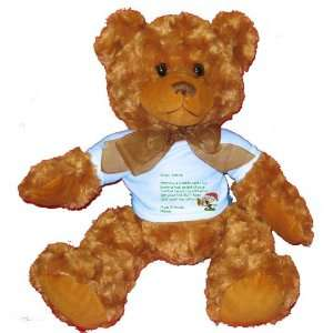 Dear Santa Letter Spoil Miguel Rotten Plush Teddy Bear with BLUE T