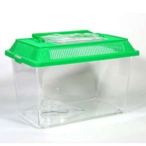 Plastic Tank Spider Reptile Livefood Insect Frog Animal Worm Cricket