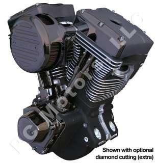 CI BLACK NICKEL PLATED CHROME BLACK GEM ENGINE MOTOR EVO HARLEY