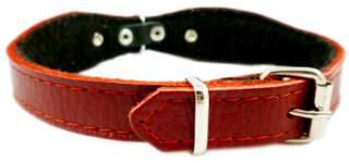 Decor Flowers Set Leather Dog Collar 11 14 Leash 52 Long Small Dogs